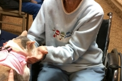 Kali-Ma the Cat at Medilodge Nursing Home
