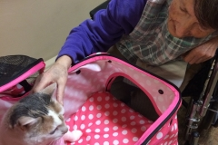 Kali-Ma the Cat at Medlilodge Nursing Home