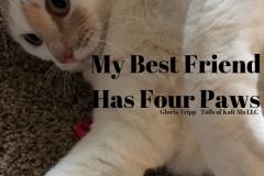 My Best Friend Has Four Paws