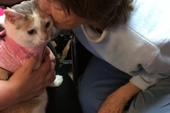 Cat Therapy with Kali-Ma the Cat at Mediloge Nursing Home