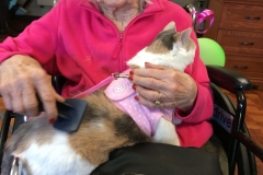 Kali-Ma the Cat doing Cat Therapy